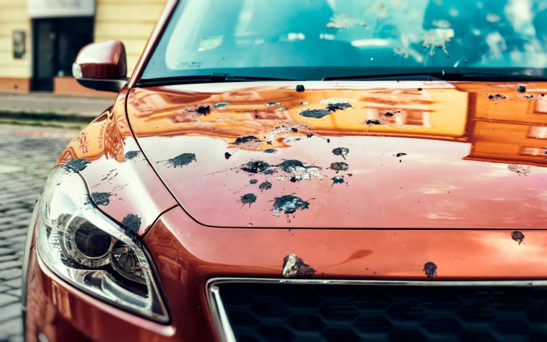 Protect Vehicles From Elements That Damage Your Paint Job